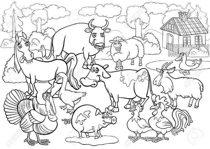 Ant Farm Coloring Pages Hewan Gambar Warna