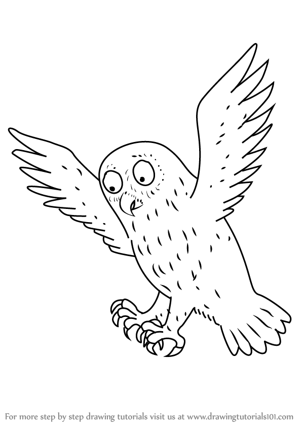 Learn How to Draw Owl from The Gruffalo (The Gruffalo