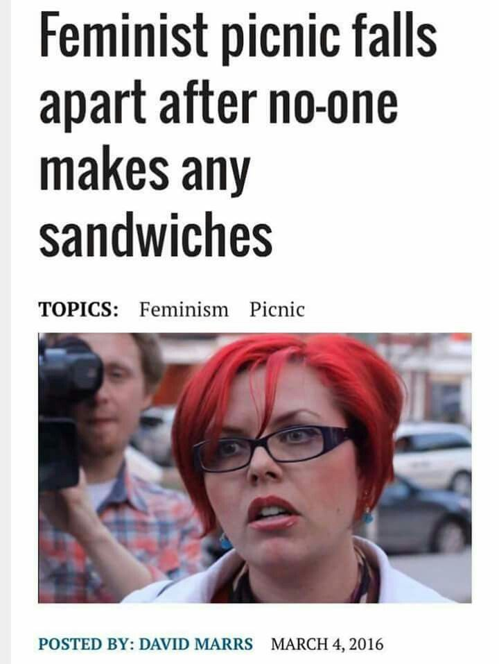 Feminist feminist