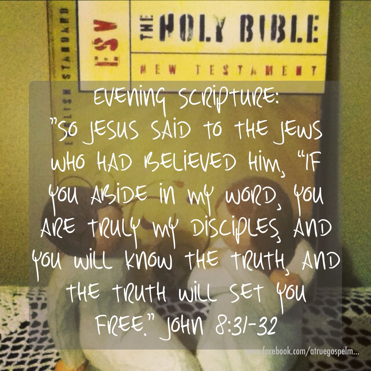 Evening Scripture: the truth WILL set you free... # ...