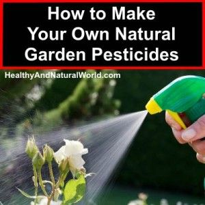 How to Make Your Own Natural Garden Pesticides