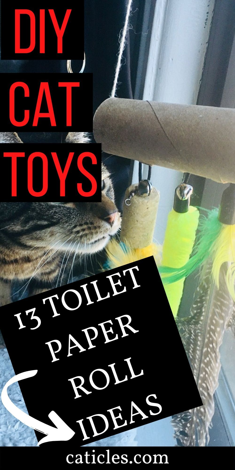diy dog toys for shelters