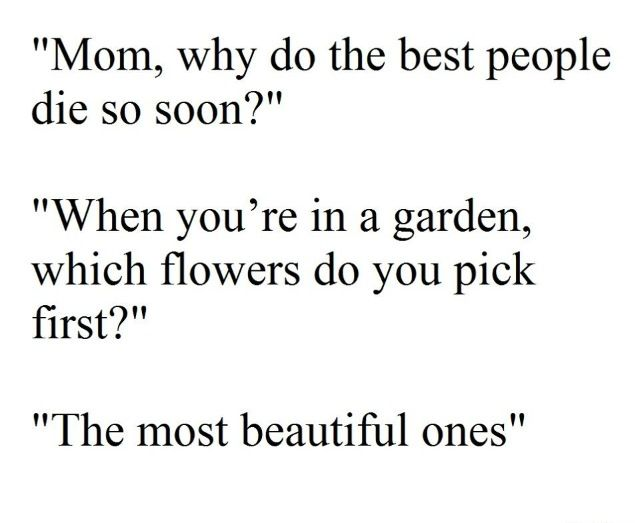 Which Flowers Do You Pick First The Most Beautiful Dying Young Quotes Young Quotes Words