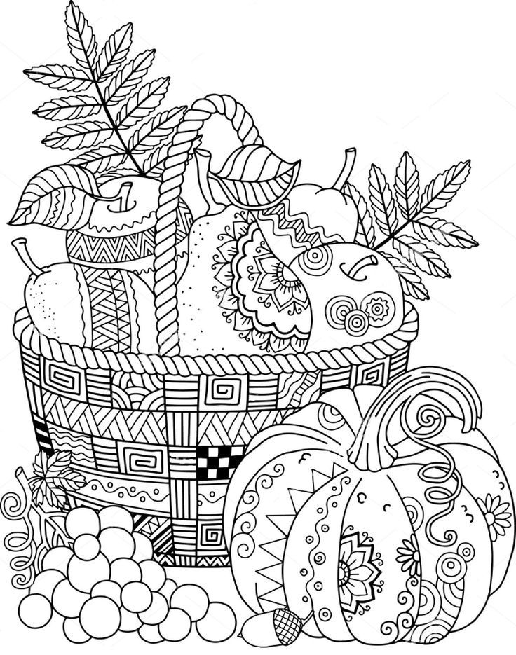 Detailed Turkey Advanced Coloring Page Thanksgiving Coloring Book Fall Coloring Pages Turkey Coloring Pages