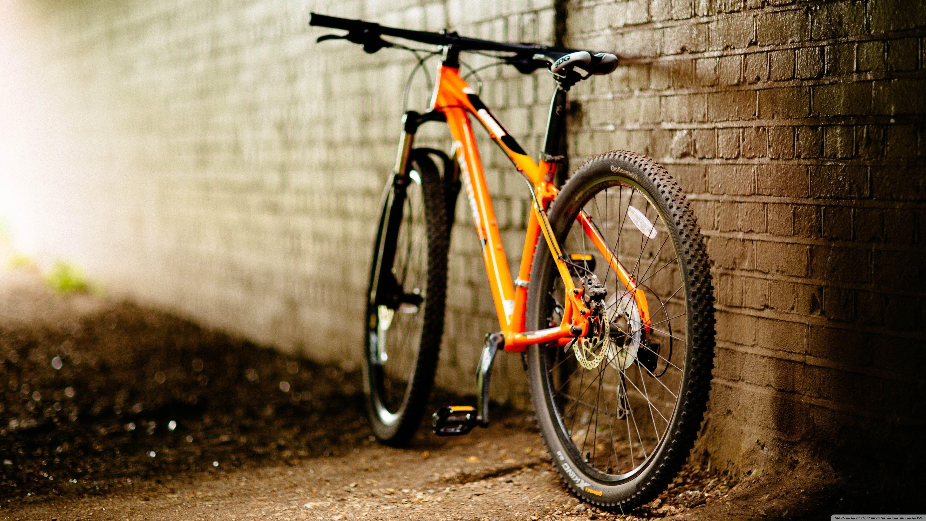 Elegant Cool Bike Wallpapers In 2020 Bicycle Wallpaper Best