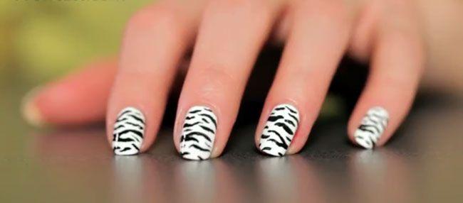 Zebra Print Nail Art Step By Step With Nail Art Pen Fashion Craze