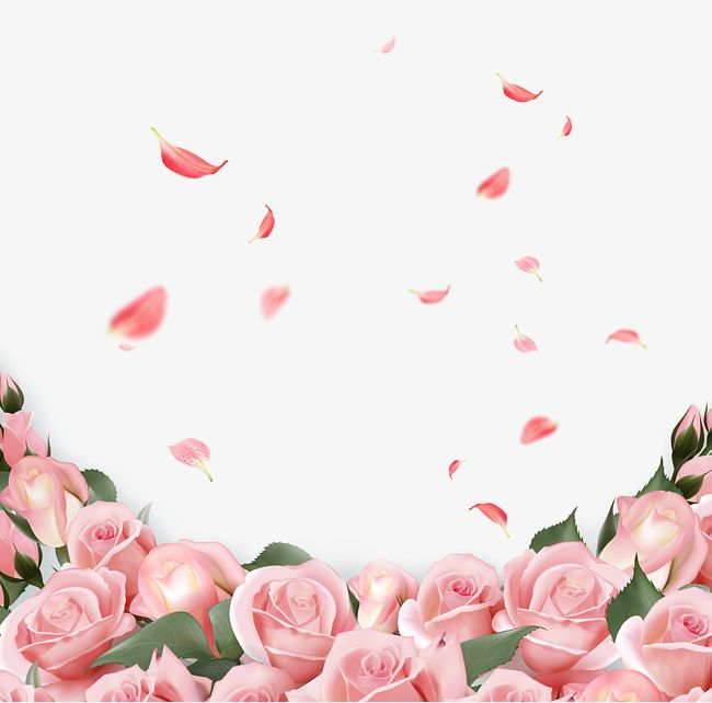 Rose Leaf Background Decoration Pink Flowers Petal Botany Delaying Senility Background Dec Pink Flowers Background Flower Backgrounds Spring Flowers Background
