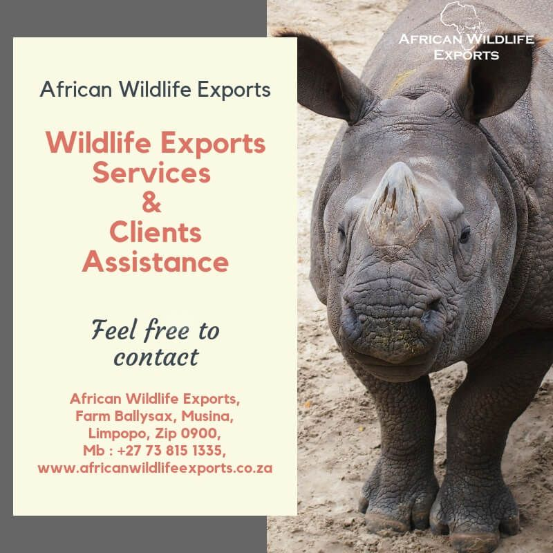 Wildlife exports services to cover the Entire wildlife