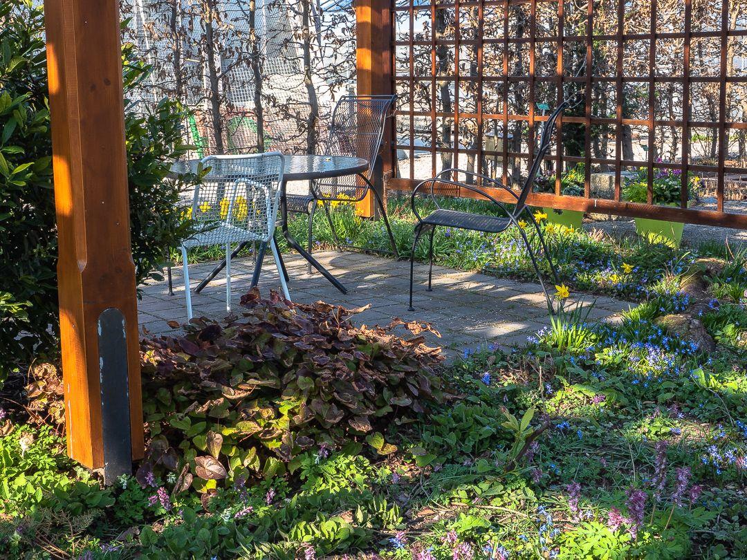 Fruhling Im Botanischen Garten Fruhlingsimpressionen Aus Dem Botanischen Garten Augsburg Spring Impressions From The B Outdoor Structures Garden Arch Plants