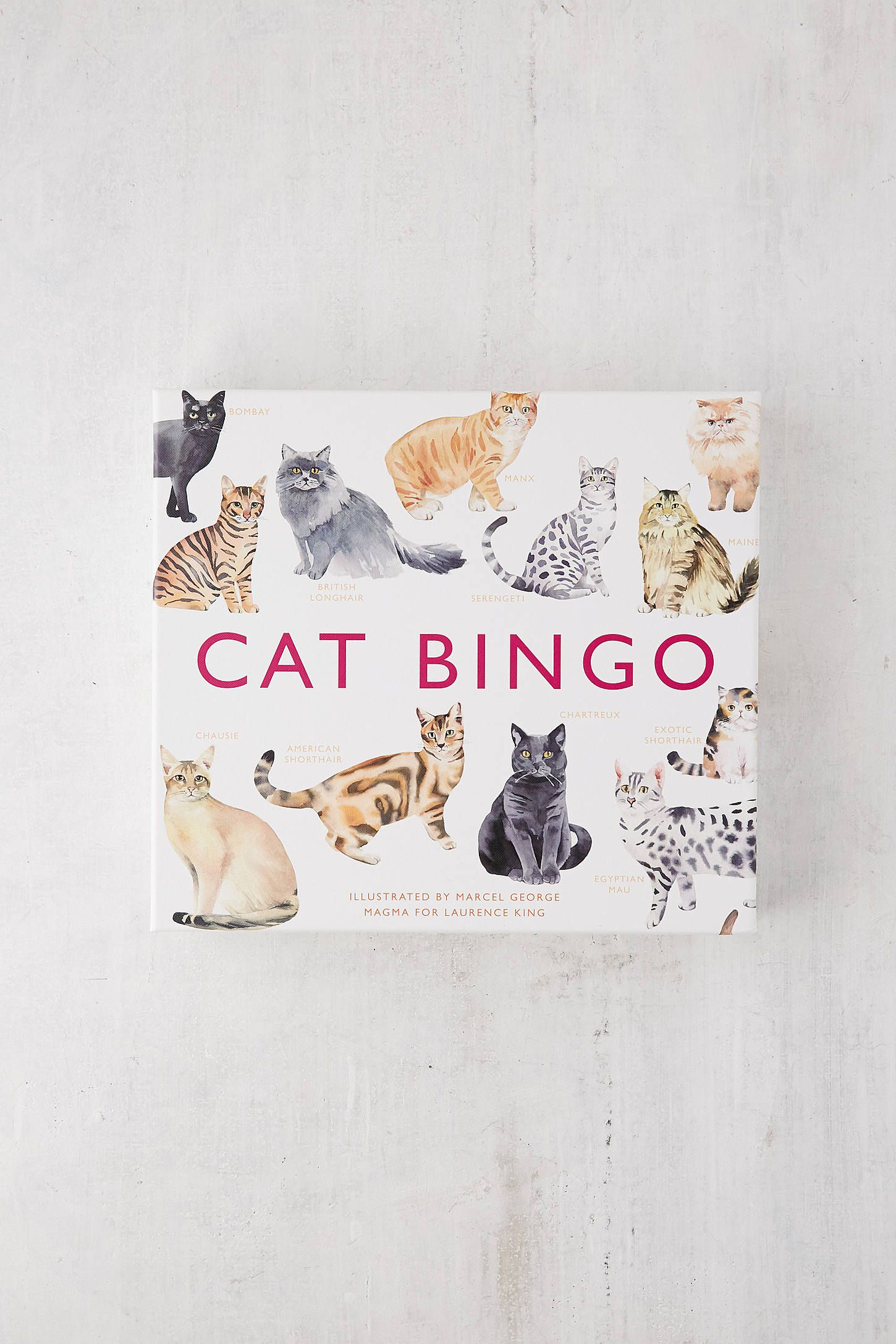 Cat Bingo Gift Ideas Games To Buy Bingo Et Bingo Board