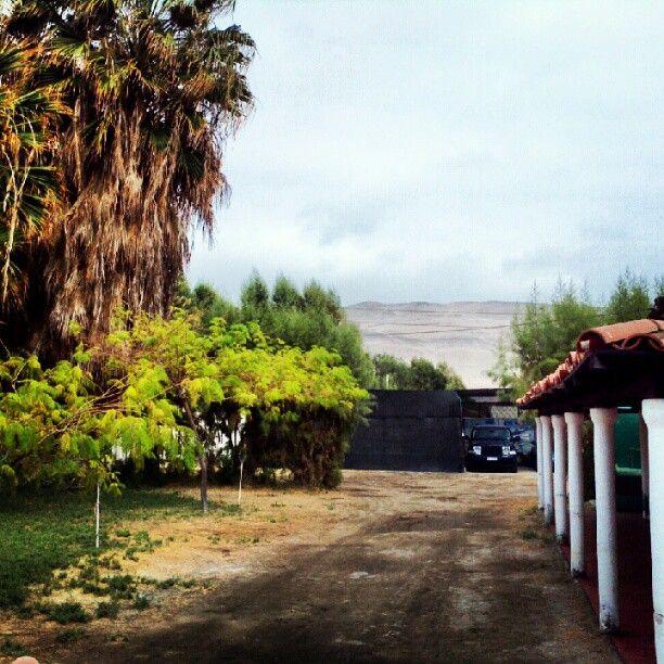 Valle De Lluta en Arica, Arica y Parinacota Este valle está ubicado a unos cinco kms del centro de Arica, produce durante todo el año una gran variedad de frutas tropicales y hortalizas, además de la siempre prestigiada aceituna de Azapa, famosa por su color violáceo y sabor amargo. Posee un alto valor arqueológico, el Cerro Sombrero cuenta con geoglifos y una aldea prehispánica, ubicada a media ladera de un cerro. Por su parte el Cerro Sagrado cuenta con impresionantes geoglifos ubicados en…
