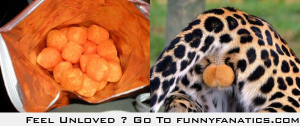 Cheetos Balls vs. the real thing. The accuracy is disturbing.