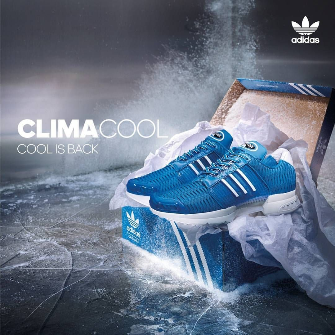 Pin auf Sneakers: adidas Climacool