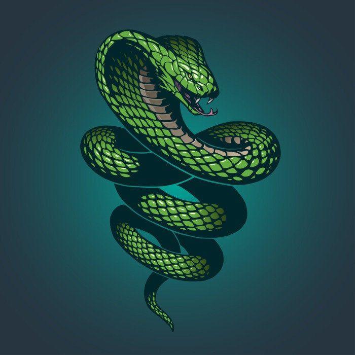 Snake Bath Mat, Animal Print Bath Rug, Snake Bath Decor, Emerald Green Bath Mat, Snake Rug, Animal Bath Mat, Green Bathroom Decor, Customize