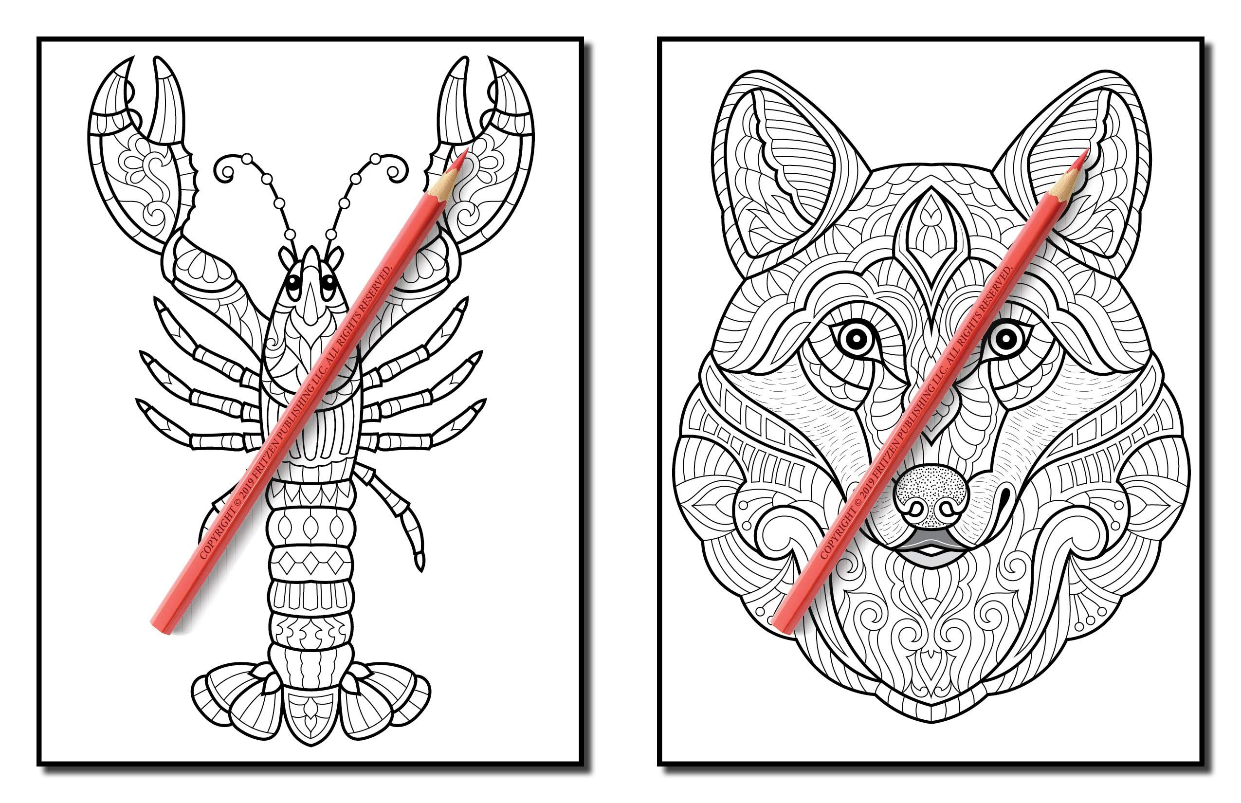 Pin On National Park Coloring Books