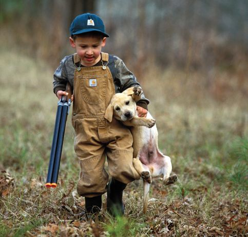duck hunting dogs | ... : Winging It | Greenhead.net | The ...