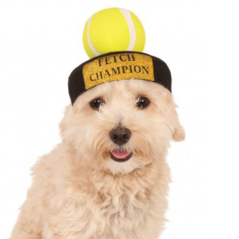 Fetch champion hat dog costume at dog