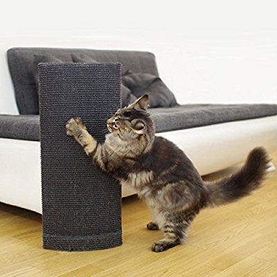 Outstanding Duchess Of Sofa Savers Cat Scratching Post Couch Corner Onthecornerstone Fun Painted Chair Ideas Images Onthecornerstoneorg