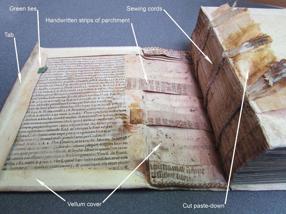 Vellum binding dissection (With images) Book binding diy