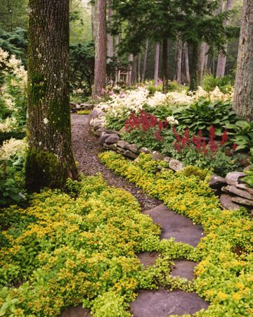 Making Real Lasting Change Is Like Plowing A Path The More You Use It The Easier It Gets Garden Tours Shade Garden Garden Paths