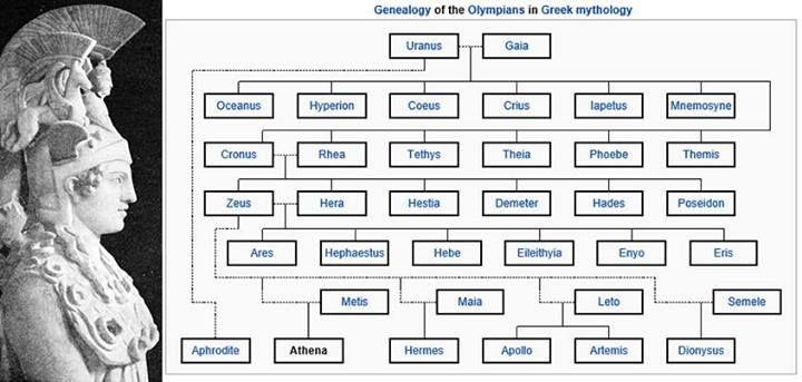 Genealogy of the Olympian Gods and Goddesses | Things I ...