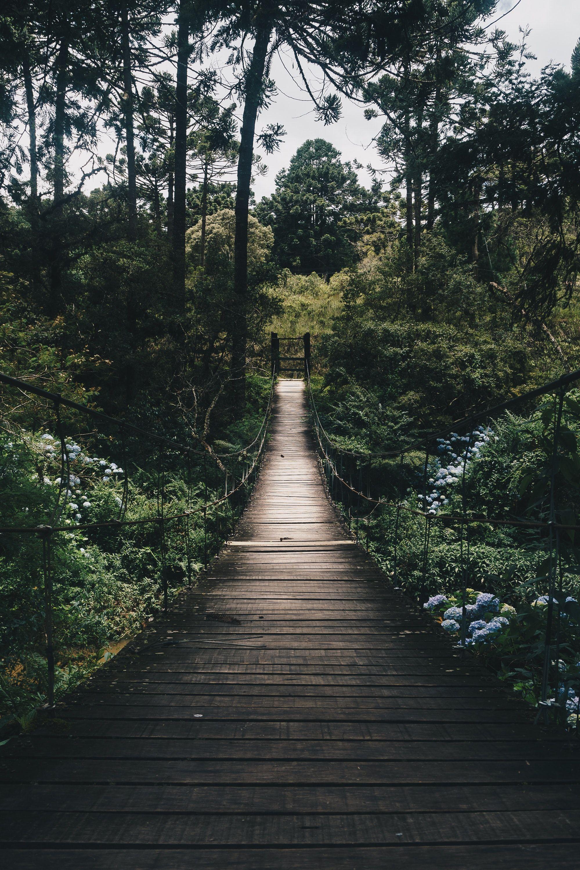 Zen im Alltag – Der Weg zu sich selbst #beautifulviews