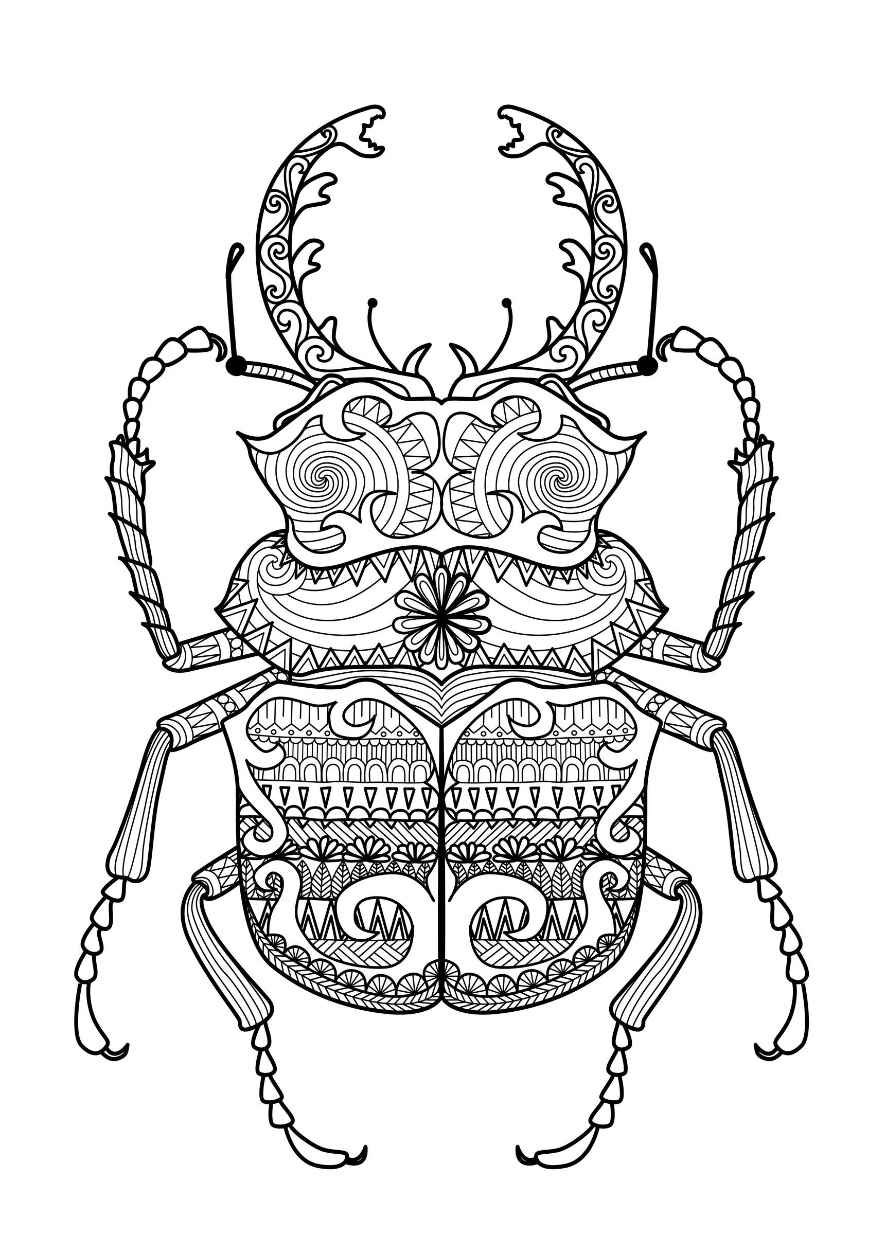 free coloring page coloring zentangle beetle by bimdeedee