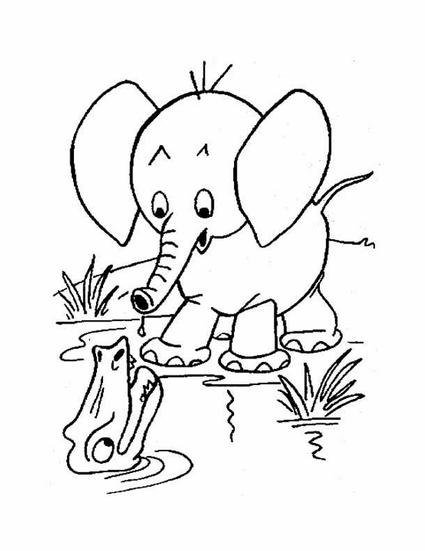 Download free printable baby elephant coloring pages to color