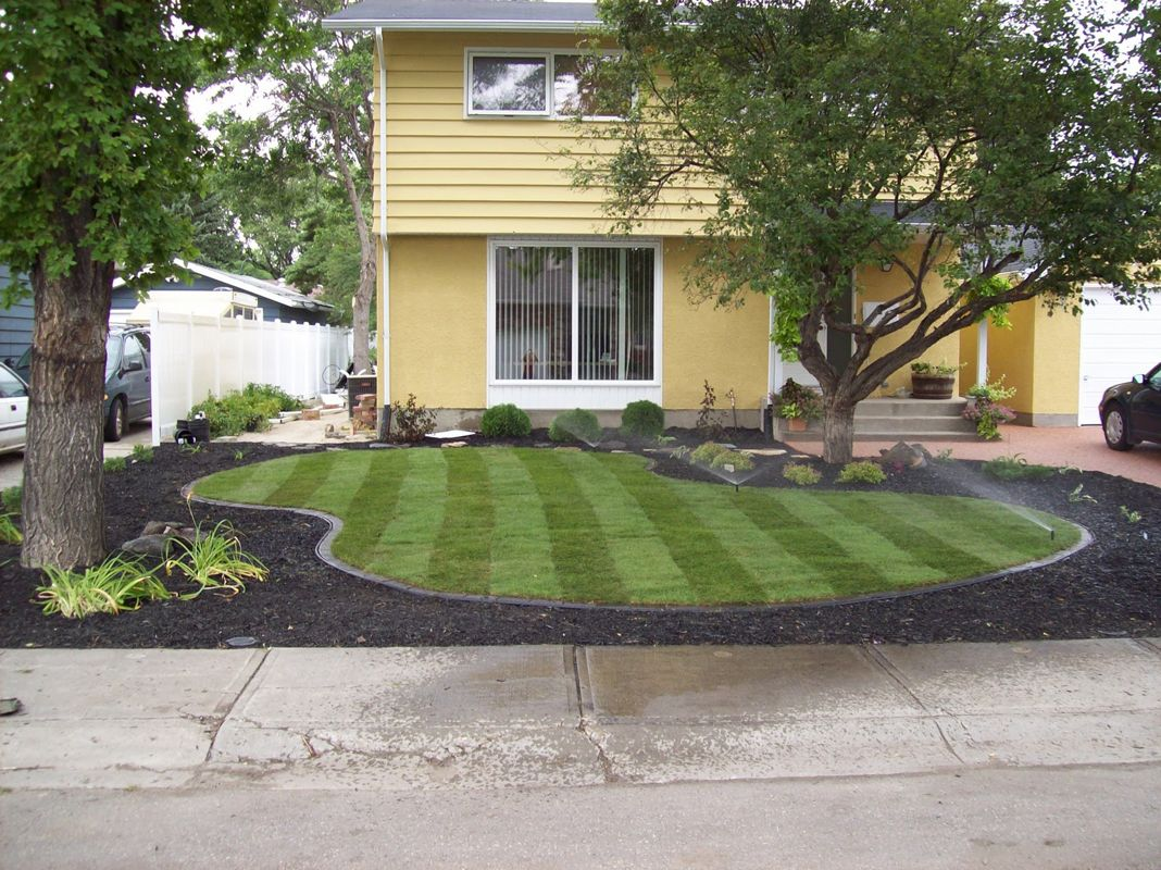 Black Mulch Landscaping Ideas - Viewing Gallery   exter-podworko ...