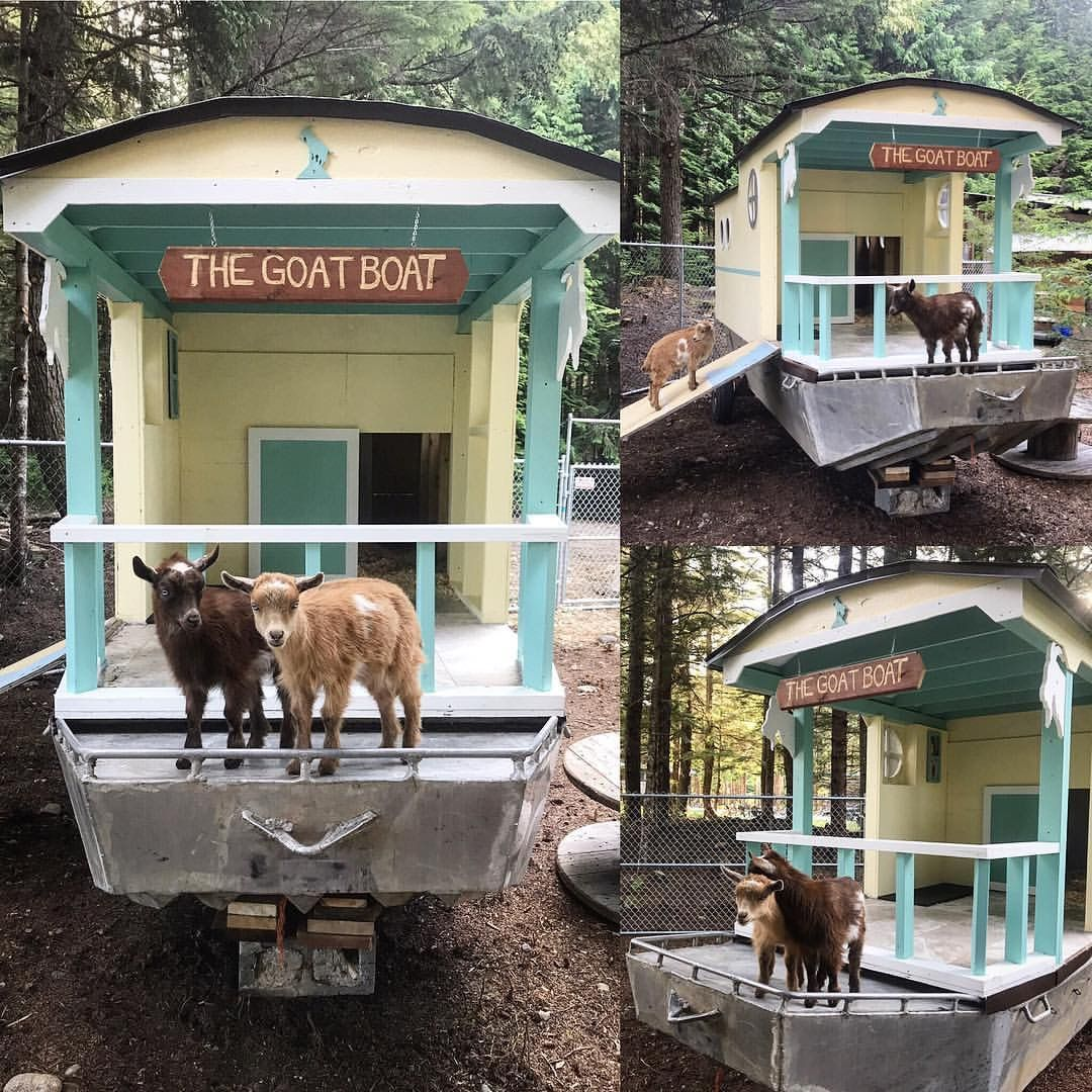 The Goat Boat : We Made A Mobile Goat House On An Old