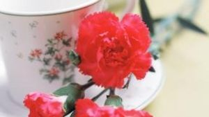 Themes for a Mother-Daughter Tea | eHow