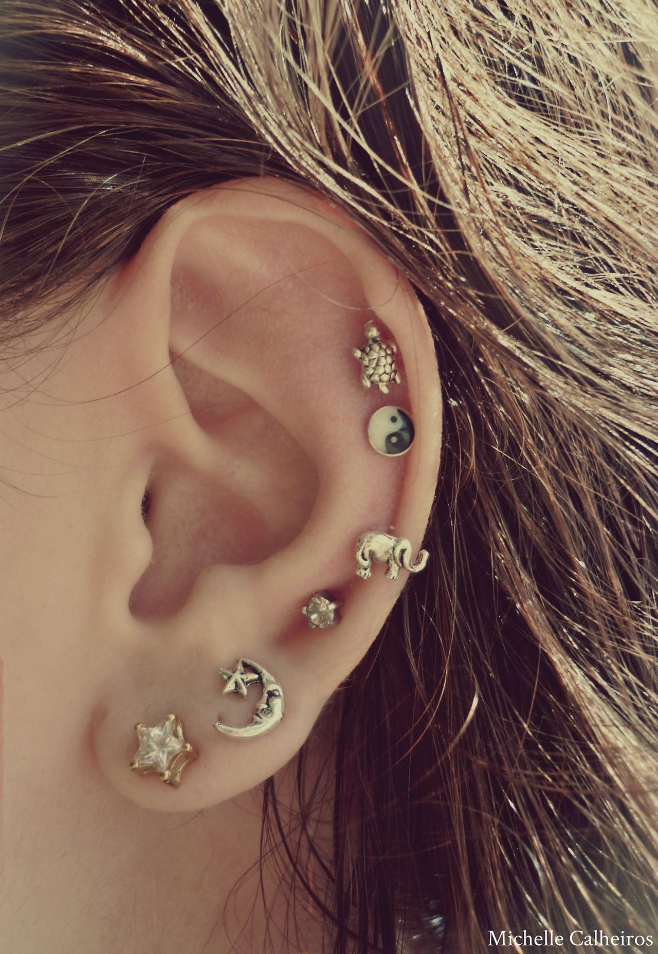 Cute nose piercing jewelry  Donut want all those piercings but LOVE the earrings only