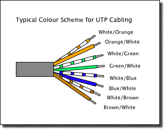 twisted pair school pinterest twisted pair rh pinterest com unshielded twisted pair cable diagram cat5 twisted pair wiring diagram