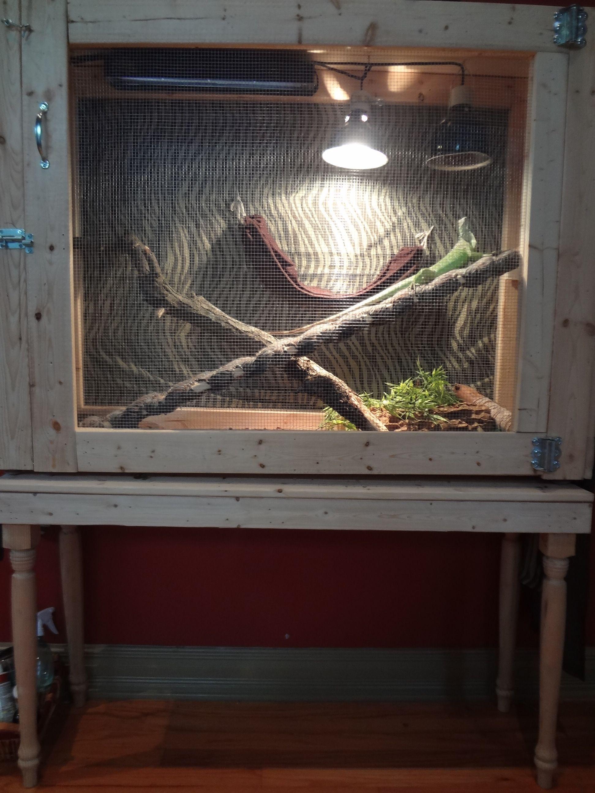 homemade iguana cage iguana pinterest iguana cage and pet cage