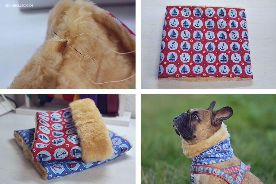 Anleitung: Loop-Schal für Hunde selbst nähen | Nähen | Pinterest ...