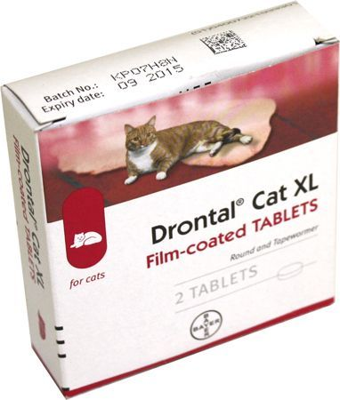 Drontal Cat Xl Tablets Drontal Cat Xl Tablets Express Chemist Offer Fast Delivery And Friendly Reliable Service Buy Drontal Cat Tablet Expressions Friendly