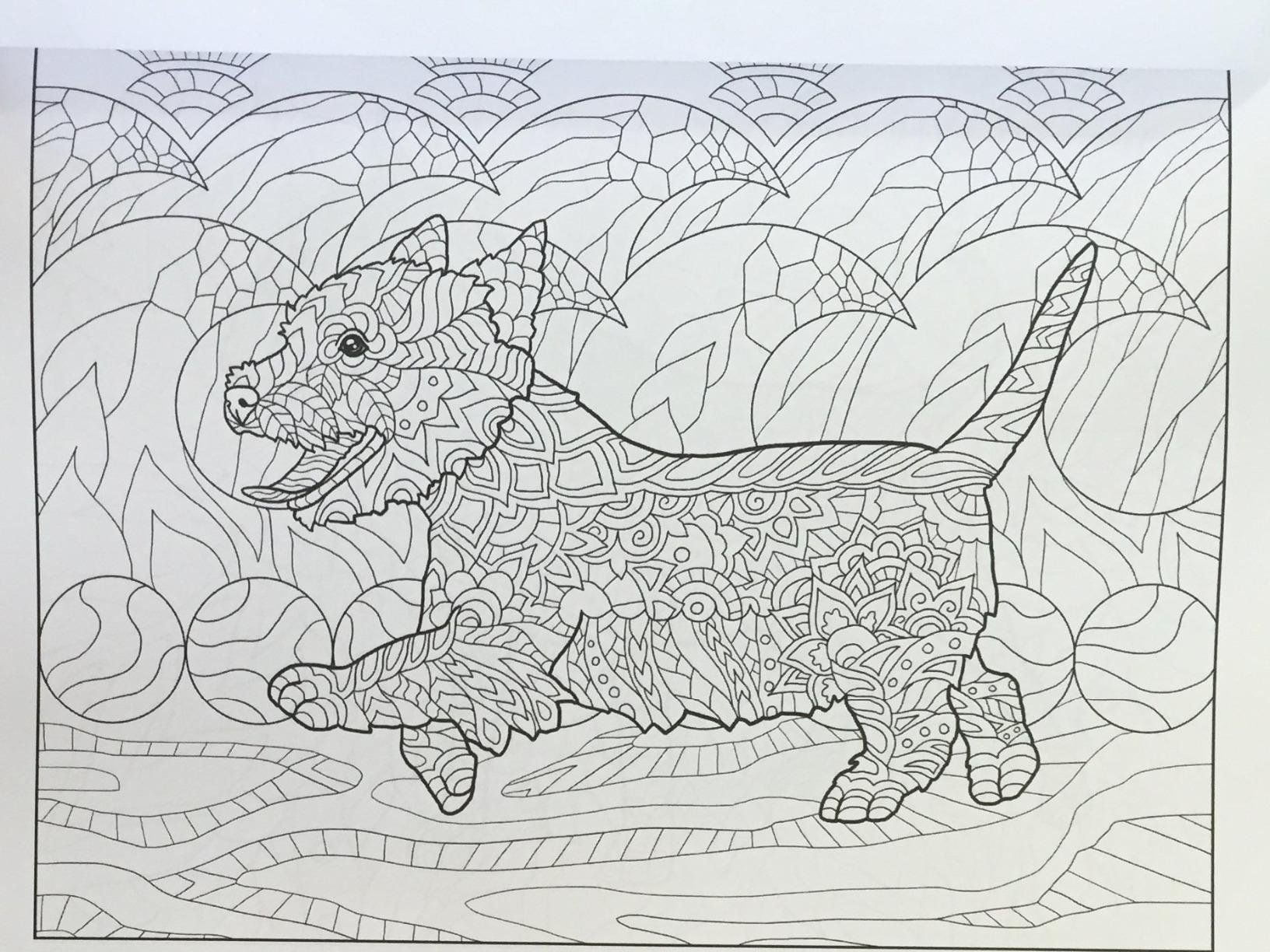 Amazon Doodle Dogs Coloring Book For Adults 9781533625649 Happy Amanda Neel Books