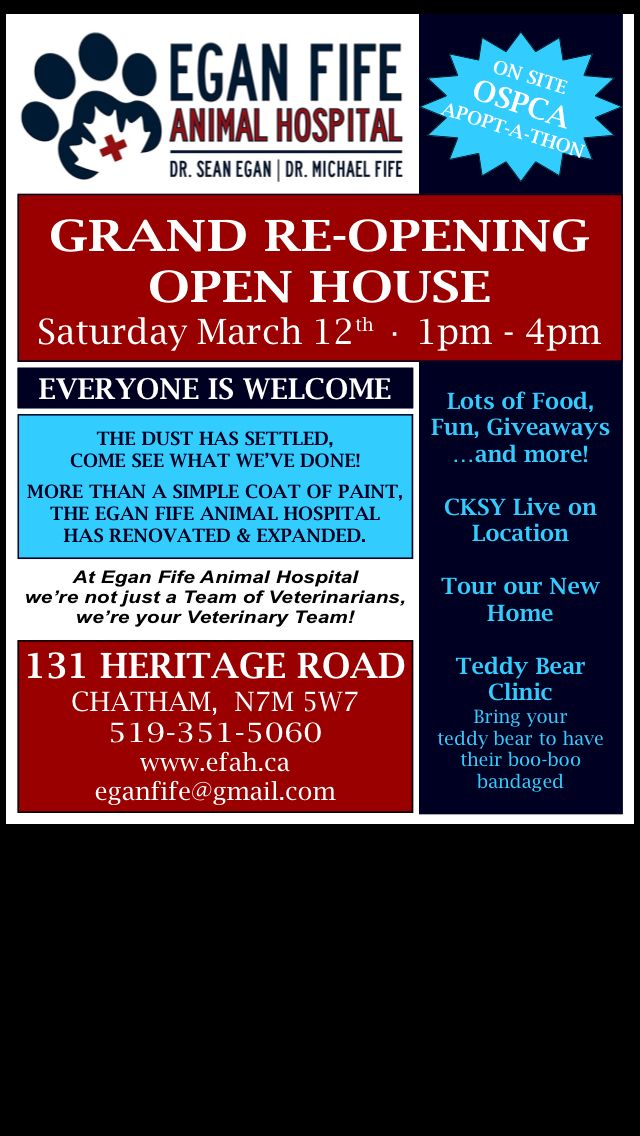 Egan Fife Animal Hospital Grand Re Opening Open House Saturday March 12th 2016 From 1 4pm Open House Veterinary Clinic Animal Hospital