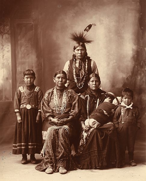 Native Americans in the United States Essay