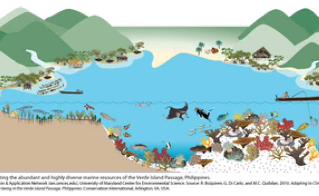 ocean marine ecosystem diagram great barrier reef. Black Bedroom Furniture Sets. Home Design Ideas