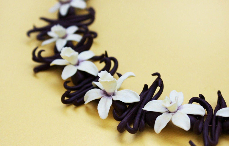 Pin di Stria93 su Vanilla