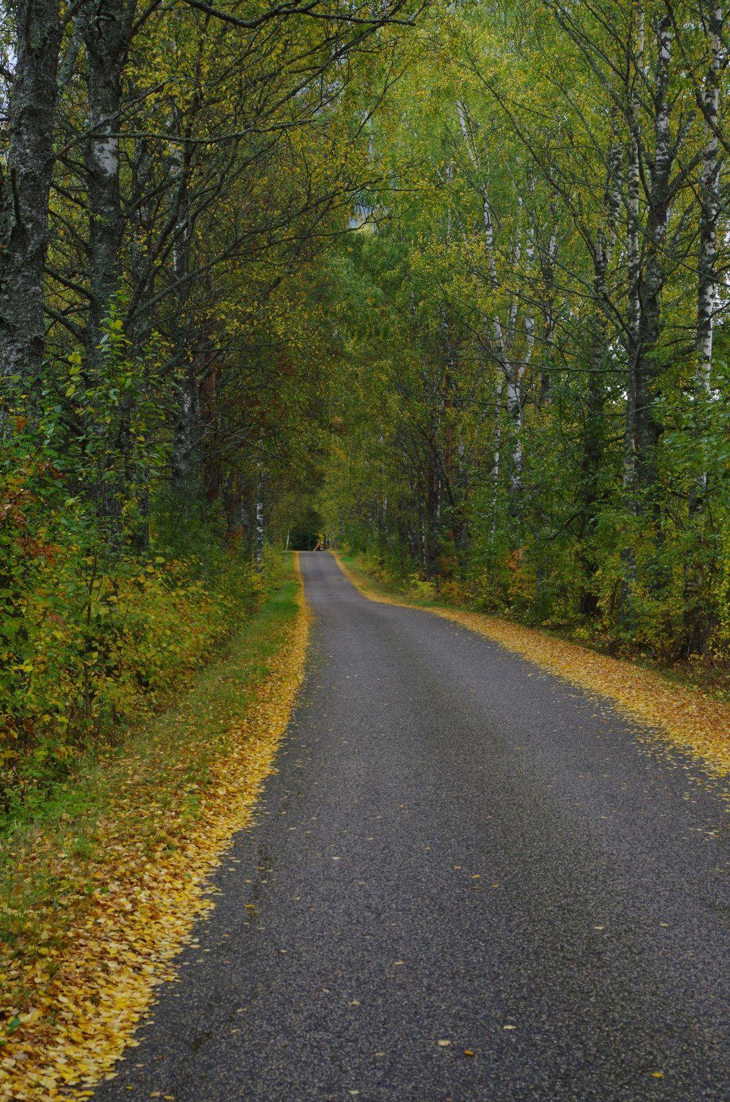 Põlva, Estonia by kriimurohelisedsilmad