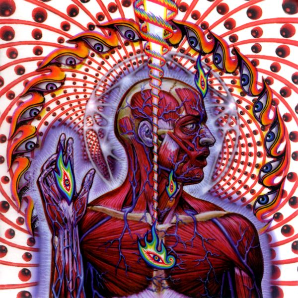 Alex Grey Tool Album