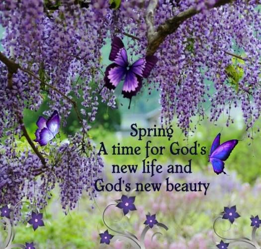 Facebook Timeline Cover Life Quotes: Spring...God's New Life...new Beauty.