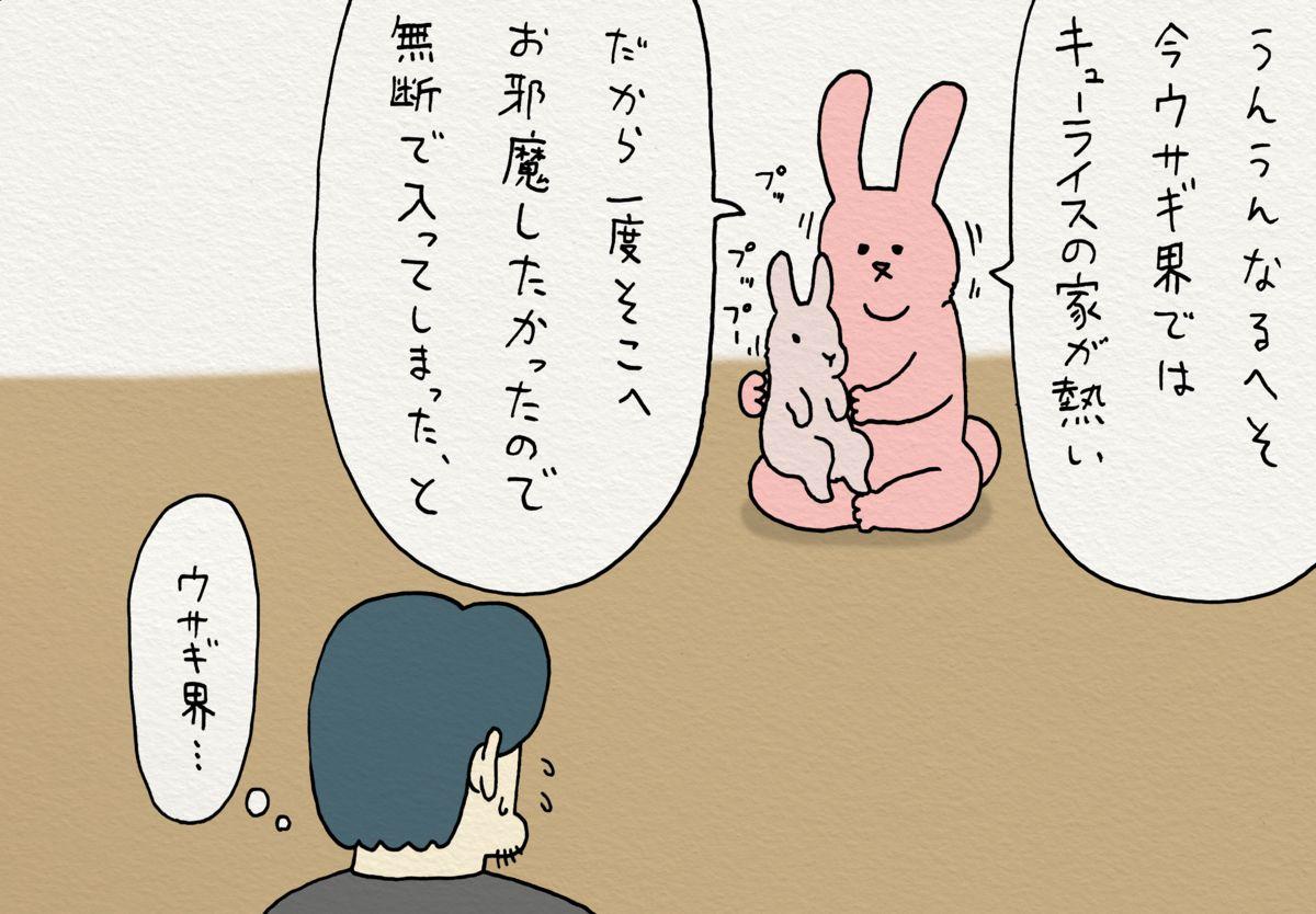 スキウサギ スキウサギの消失エピローグ スキウサギ ウサギ キューライス