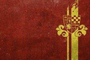 Images For Gt Gryffindor Quidditch Wallpaper 1600x1089px Slytherin Desktop Wallpaper 392511 Harry Potter Aniversario Harry Potter Harry