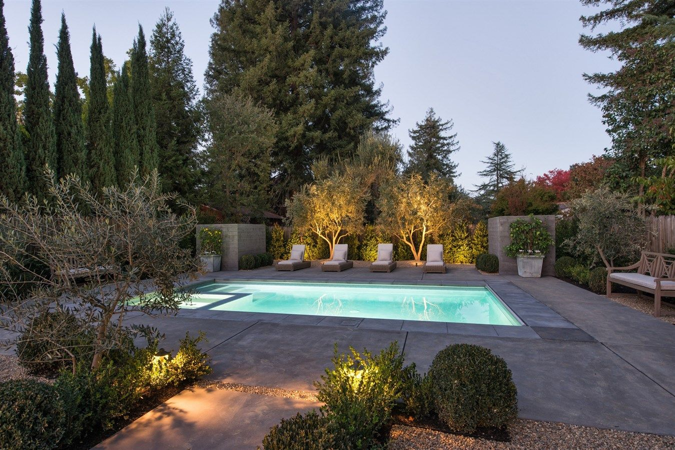 Simple Low Maintenance Pool Backyard Pool Landscaping Pool Landscaping Pool Landscape Design