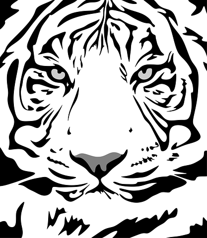 Tigerkopf Malvorlage Coloring And Malvorlagan