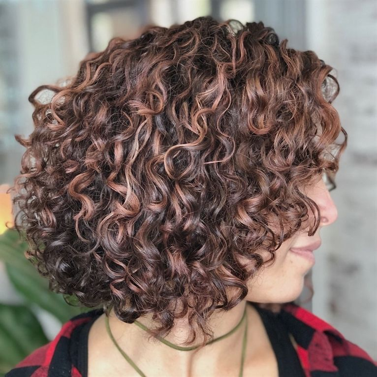 Brown Curly Bob With Rose Gold Highlights Naturallycurlyhairstyles Cabelo Encaracolado Medio Cabelo Cabelo Encaracolado Curto