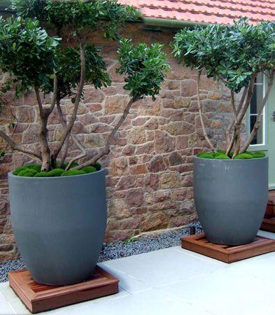 Urbis Design Contemporary Concrete Planters And 640 x 480